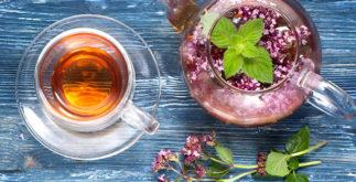 Chá de orégano – Benefícios e propriedades