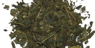 Conheça o irmão do chá verde: o ban-chá