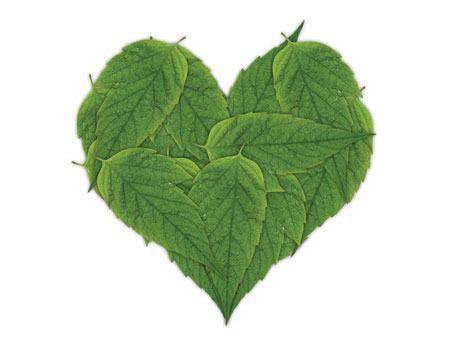 Chás que tratam e protegem o coração
