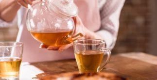 Benefícios e propriedades do chá de carqueja