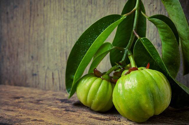 Frutos da garcínia