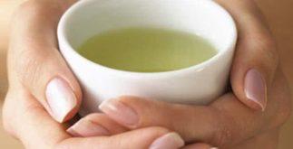 Receitas de chás com poder antioxidante