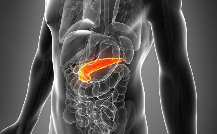 Chás que são benéficos para o pâncreas