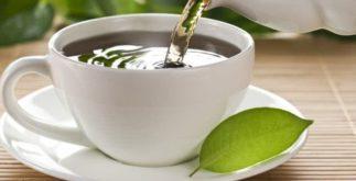 A origem do chá
