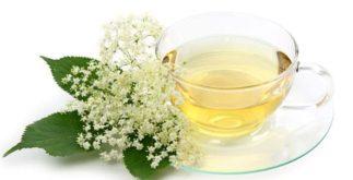 Chá de sabugueiro serve para tosse e muito mais