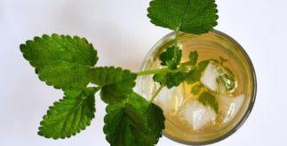 Refresque-se e viva melhor com três 'super' receitas de chás gelados