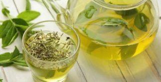 Quem pode e quem não pode tomar chá verde?