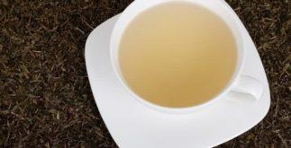 Os benefícios de reaproveitar as folhas de chá verde