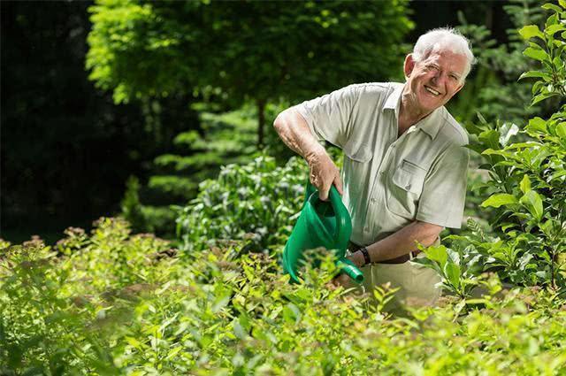 Imagem de homem regando plantação