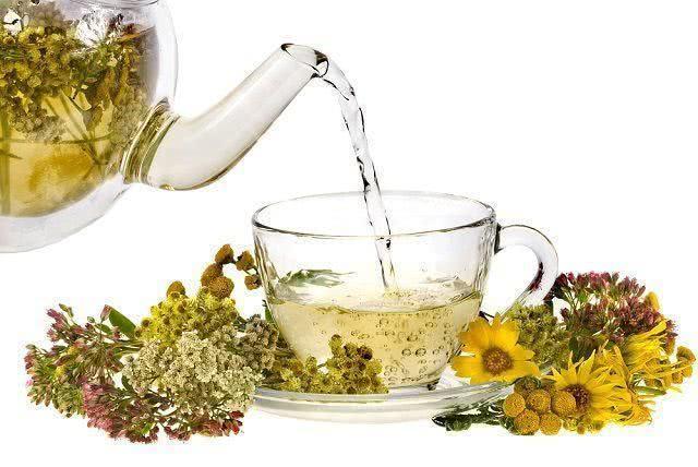 aprenda-formas-de-usar-melhor-as-ervas-medicinais