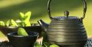 O poder antioxidante do chá de pólvora