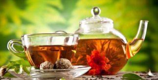 Preparando um delicioso chá de florescência