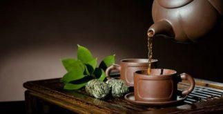 Conheça os mais comuns fatos e boatos sobre ervas de chás