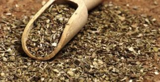 Os efeitos nocivos do chá de orégano