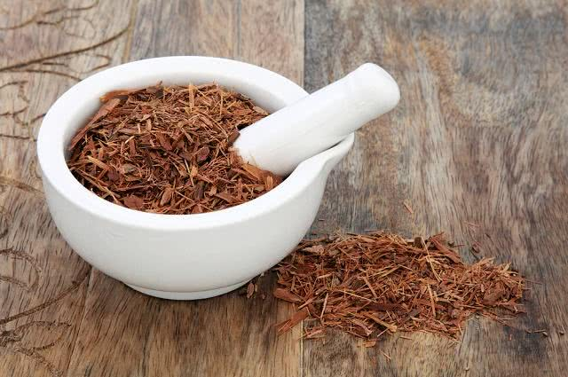 Chá de catuaba auxilia a melhorar o desempenho sexual
