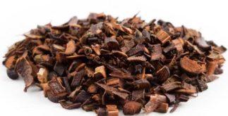 Os benefícios e as propriedades do chá de honeybush