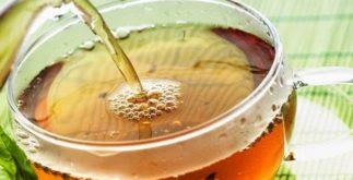 Propriedades e benefícios das catequinas de ECGC do chá verde