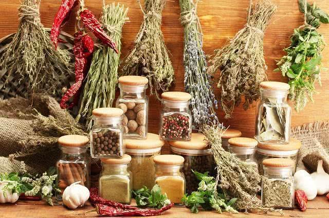 Descubra incríveis tipos de ervas naturais aromáticas