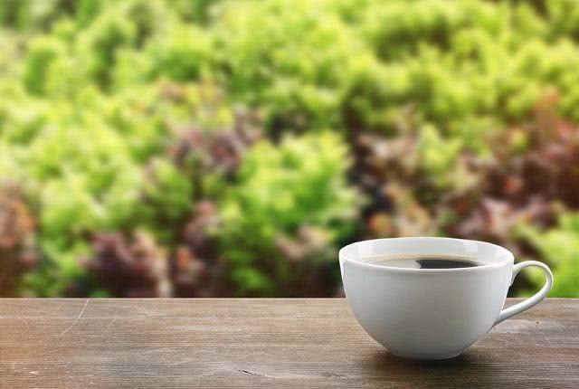 Chá Ayahuasca: benefícios e propriedades
