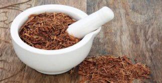 Os chás mais populares em cada região do Brasil