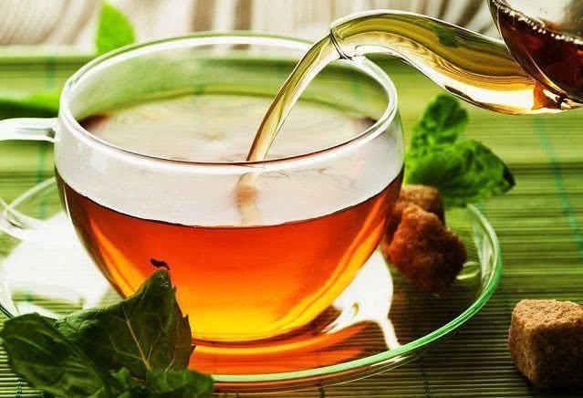 Confira os efeitos benéficos do chá de guaco