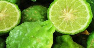 Conheça o benéfico chá de bergamota