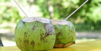 Chá de coco da Bahia, poderoso diurético