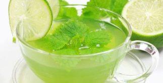 Chá da hortelã gorda é capaz de tratar problemas respiratórios
