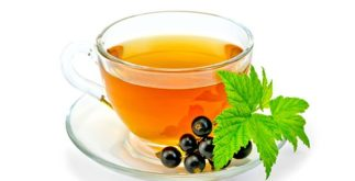 Chá de groselha negra: Surpreenda-se com os benefícios e as propriedades