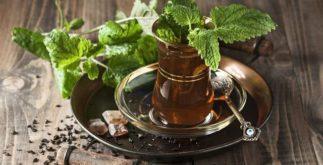 Chá de hortelã romana é aconselhado para tratar artrite e artrose
