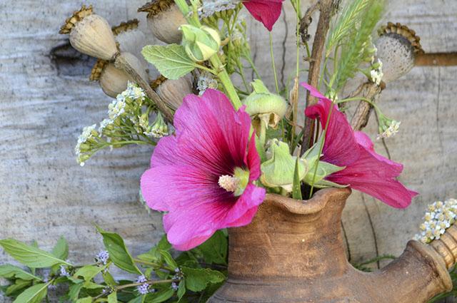 Entre os benefícios do chá de malva do campo estão o de tratar tosse a alergias