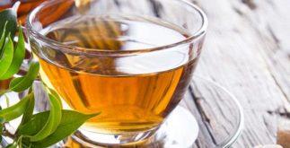 Por quanto tempo o chá verde faz efeito no corpo? Aprenda a consumir