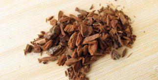 Chá de quinino elimina o vírus da malária. Saiba como