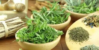 Chá de ervas finas emagrece e pode ajudar a combater o câncer