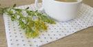 Chá de virgaurea combate inflamações na bexiga e nos rins