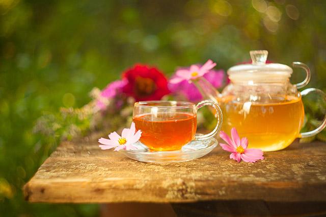 Qual é o melhor chá para cada hora do dia? Descubra!