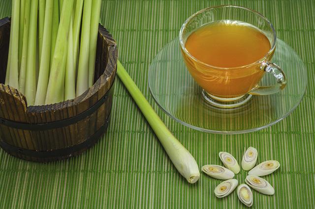 O chá de capim cidreira pode ser usado para emagrecer pois acelera o metabolismo