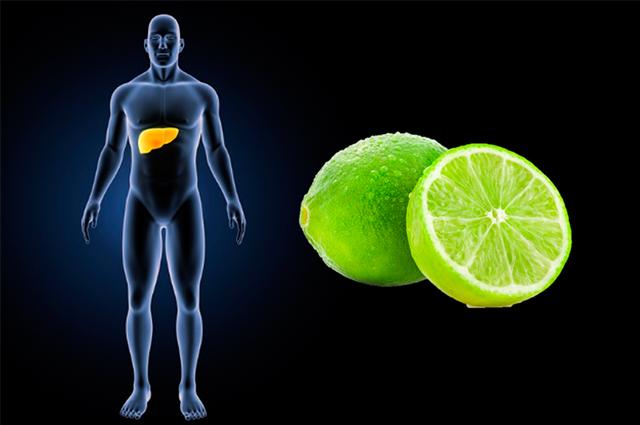 O consumo correto do chá de limão não faz mal ao estômago
