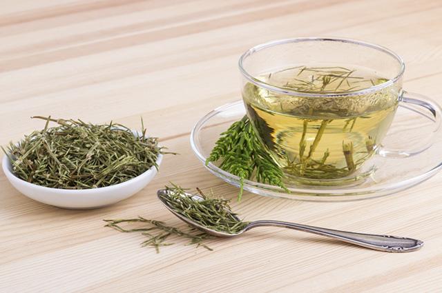 O chá de cavalinha acelera o metabolismo e potencializa a queima de calorias
