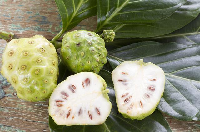 A fruta noni é rica em vitaminas dos complexos A, B, C e E