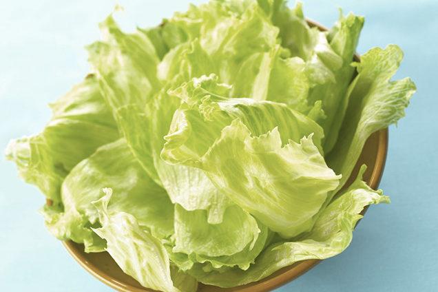 Devido a elevada quantidade de fibras, o chá de alface é indicado para regular o intestino