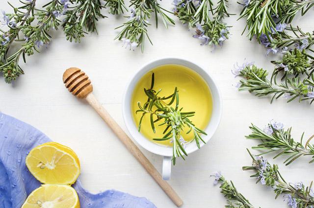 O uso do chá de alecrim é histórico, tendo sido usado pelos gregos, romanos, hebreus e egípcios
