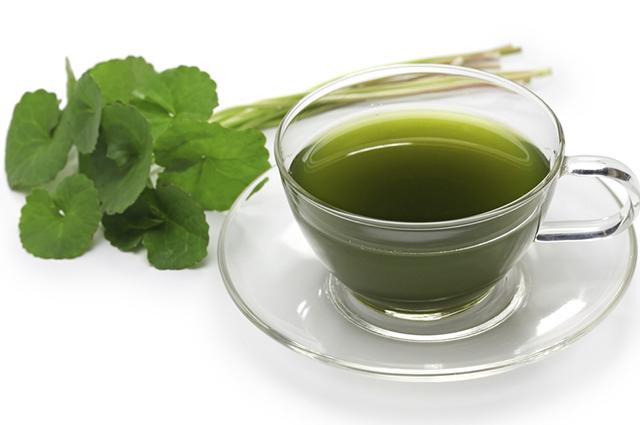 O chá de centelha asiática previne as rugas, sendo ideal para essa fase das mulheres