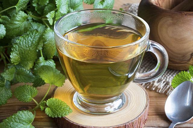 O chá de erva cidreira promove bem-estar e tranquilidade