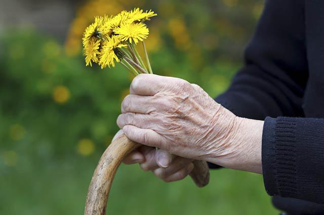 Existem chás que abrandam os sintomas do mal de Parkinson