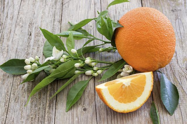 Devido a grande quantidade de vitamina C, a laranja trata e evita gripes e resfriados
