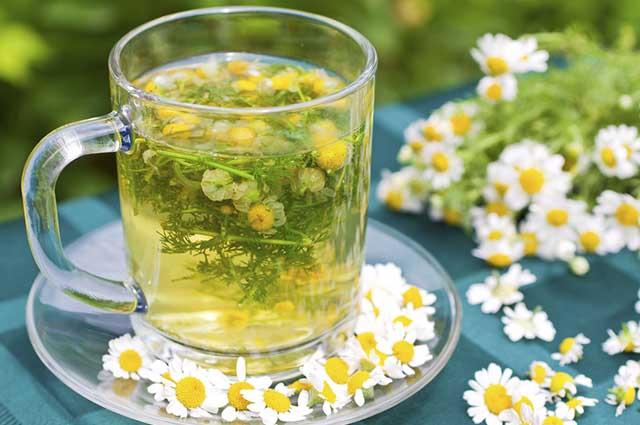 Para desfrutar dos benefícios da bebida, é importante saber fazer o chá de camomila corretamente