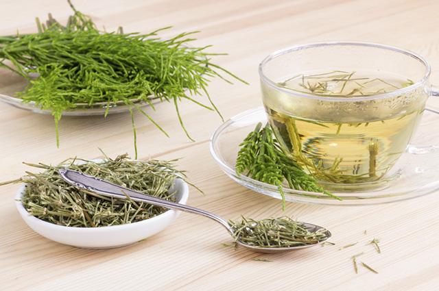 O chá de cavalinha é um excelente aliado para o corpo devido ao seu efeito diurético
