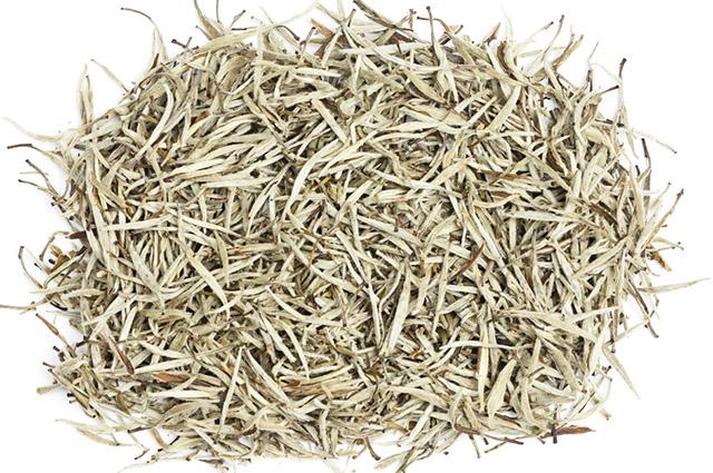 Ramos da erva do chá branco