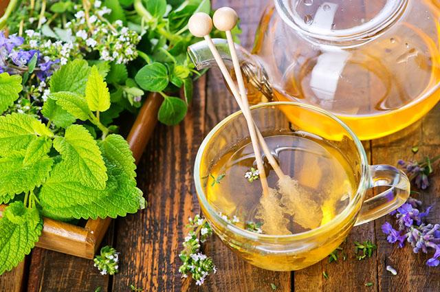 Xícara de chá com ervas ao redor